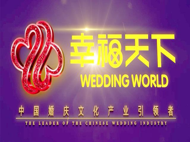 深圳幸福天下投资有限公司