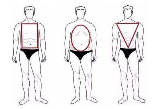 男士体型图
